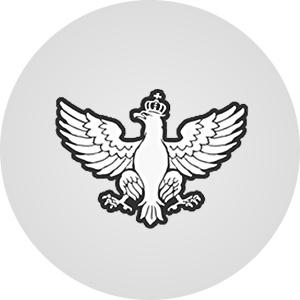 RUCH NARODOWY - poparcie w sondażach przed wyborami parlamentarnymi 2019