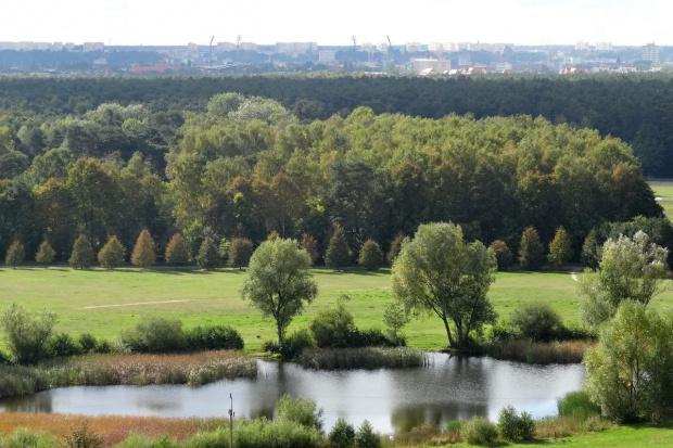 OKW 4: Bydgoszcz, Inowrocław, Świecie, Nakło nad Notecią - zdjęcie numer 3 w galerii