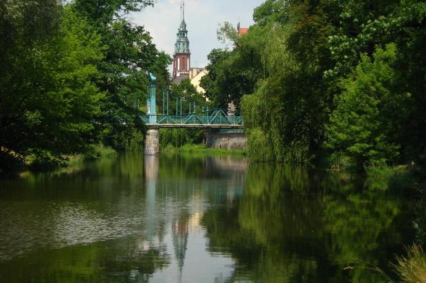 OKW 21: Opole, Nysa, Brzeg, Kędzierzyn-Koźle - zdjęcie numer 3 w galerii
