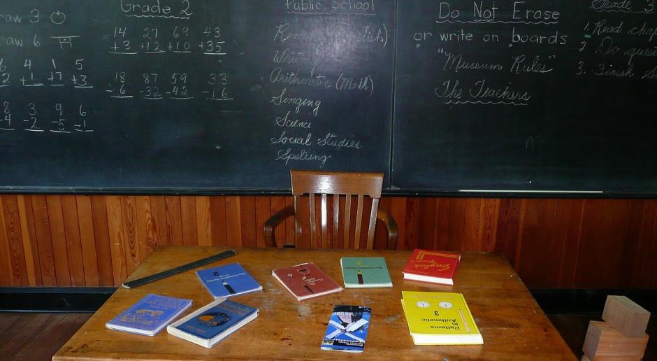 MSZ i MEN: Niemcy powinni utworzyć fundusz ds. nauki języka polskiego