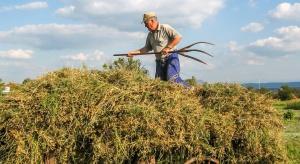 Kluby jednogłośnie: Będą wcześniejsze wypłaty zaliczek dla rolników