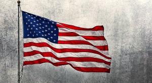 Wybory w USA: Posłowie kończą misję dla OBWE w Stanach