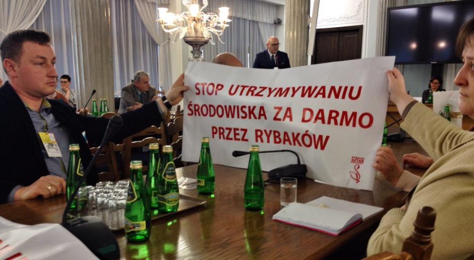 Politycy PSL w Sejmie w czasie konferencji poświęconej wycince drzew, źródło: twitter.com/ludowcypsl