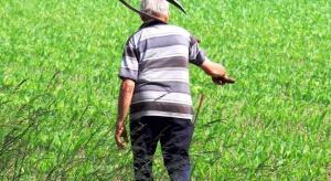 Jaki wiek emerytalny dla rolników?