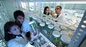 NCBR: 160 mln zł dla firm farmaceutycznych z programu Innoneuropharm
