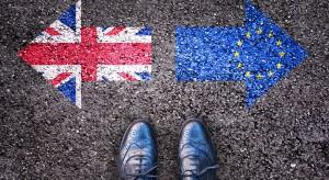 Wielka Brytania liczy na poparcie Polski ws. brexitu