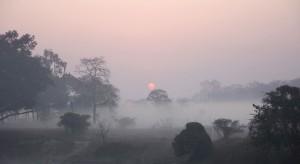Rząd będzie walczył ze smogiem w małych miejscowościach