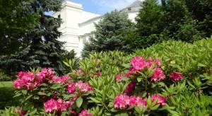 Sejm otwarty tylko na wycieczki szkolne oprowadzane przez posłów PiS?