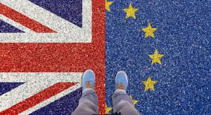 Eurosceptycy i Irlandczycy krytykują projekt porozumienia ws. Brexitu