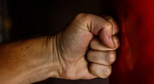 Projekt dotyczący przemocy domowej do powtórnej analizy