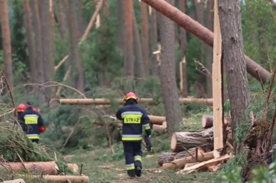 W pomoc poszkodowanym gminom zaangażowało się prawie 70 samorządów z całej Polski (fot. gdansk.pl)