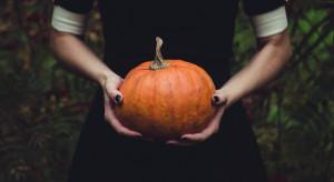 Anita Czerwińska dementuje: autorem petycji ws. Halloween nie jest Prawo i Sprawiedliwość