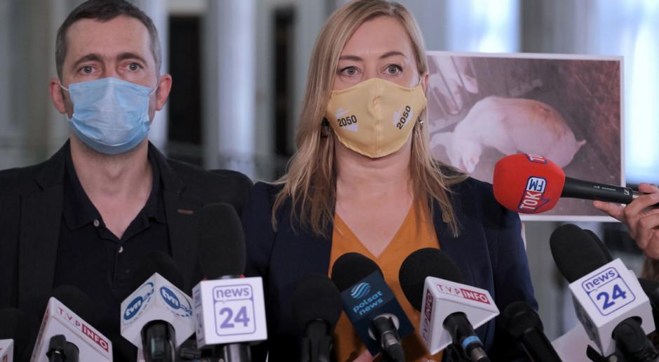 Opozycja krytycznie o rządowym projekcie dotyczącym zwierząt laboratoryjnych